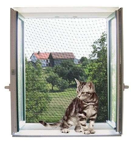 empêcher les fuites de chat