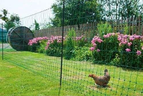 filets à poules pour enclos