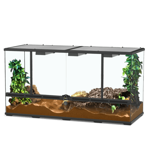 Grand terrarium aquatlantis serpent fouisseur
