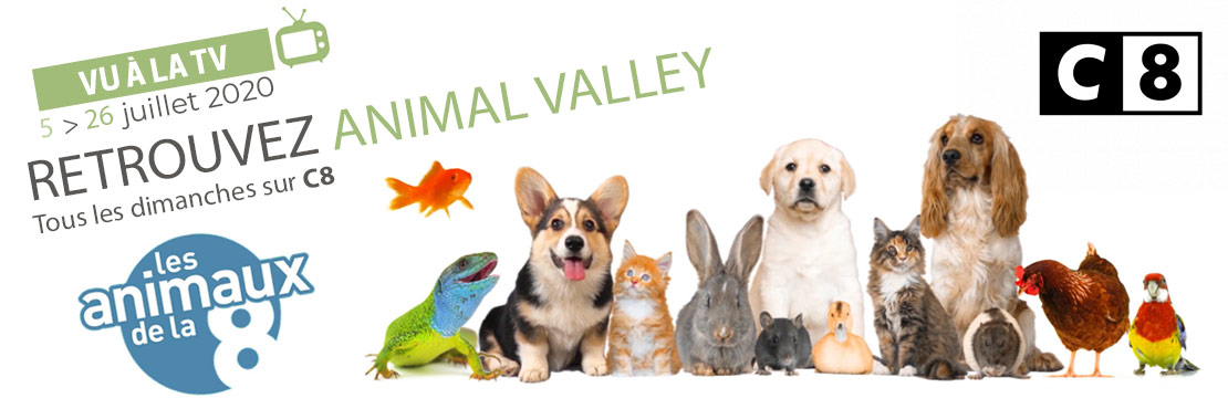 Animal Valley en partenariat avec les Animaux de la 8, sur C8