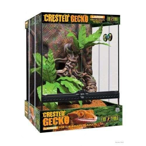 Kit terrarium gecko Exo Terra