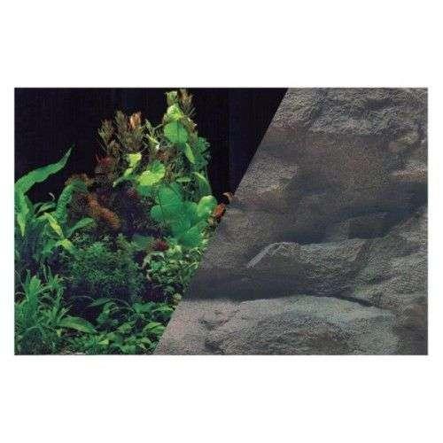 Fond décoratif pour aquarium