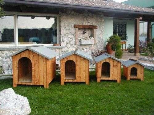 Quelle taille de niches pour chiens choisir ?