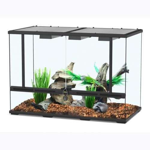 Terrarium pour serpent de taille moyenne