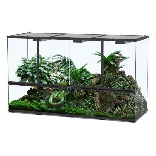 Comment bien choisir son terrarium